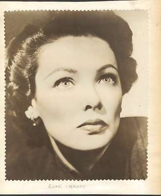 R Photo On Paper Gene Tierney USA Actress Very Nice