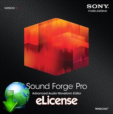 Sony Sound Forge Pro 11 *eIicense* (Sony Sound Forge 11)