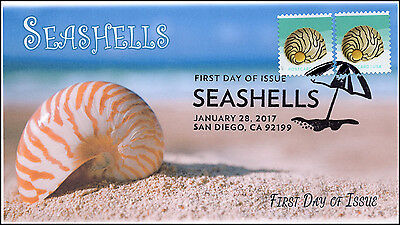 17-028, 2017, SEASHELLS, POST CARD RATE 34 CENTS, FDC, PICTORIAL, ZEBRA NERITE