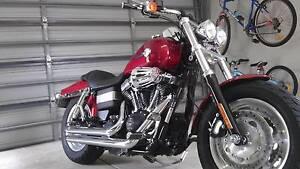 Harley Davidson 2012 Fat Bob Palmyra Melville Area Preview
