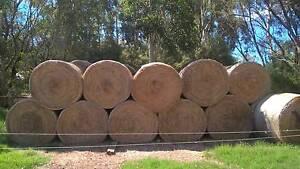 Meadow Hay Baldivis Rockingham Area Preview