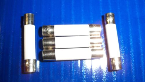 "5 Microwave Ceramic Fuses Fast Blow 20A 6x30mm  (1/4 X 1-1/4 "") 20 AMP"