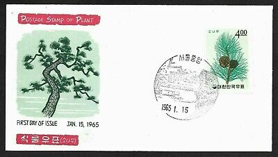 Korea Pine Branch with Pine Cones Stamp Cachet FDC First Day Cover, Plant 1965