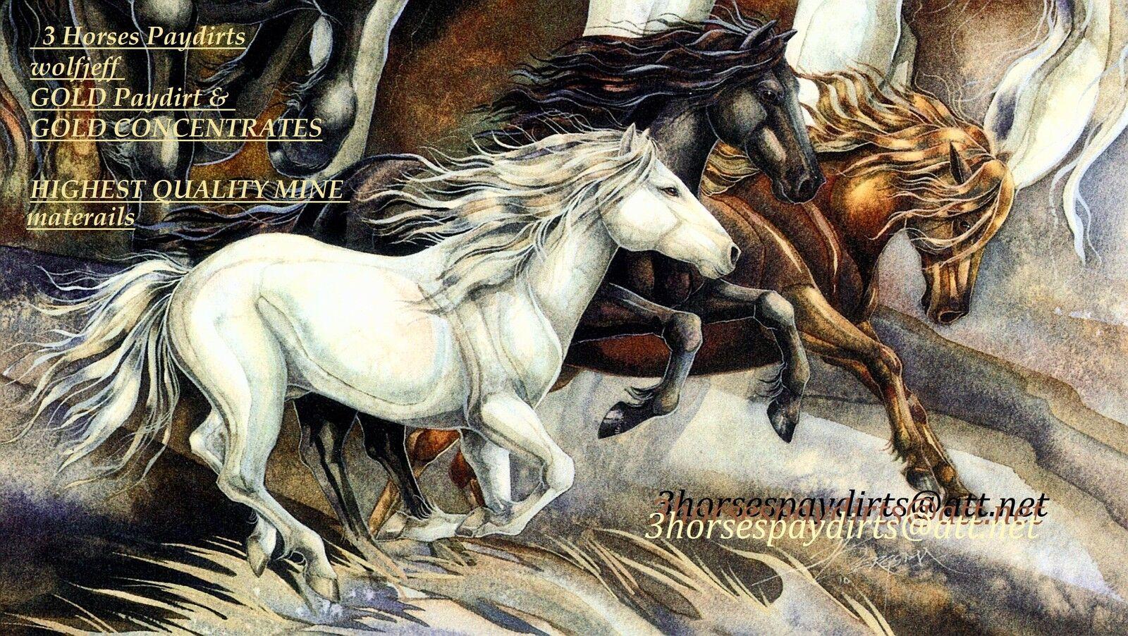 wolfjeff    3 Horses Paydirts