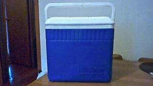 Willow Cooler - 33L Beaconsfield Fremantle Area Preview