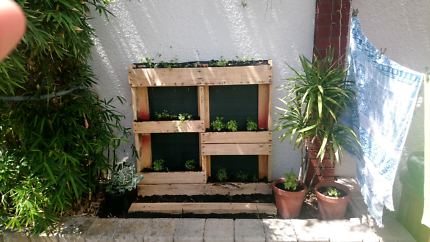 Ready made herb pallets