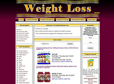 Established Weight Loss Niche Affiliate Turnkey Website Business Money Maker
