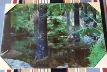 Two BRAND NEW Daintree Canvas Prints South Yunderup Mandurah Area Preview