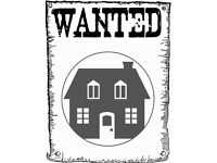 WANTED: Flat, Apartment or House to Rent in Bedworth