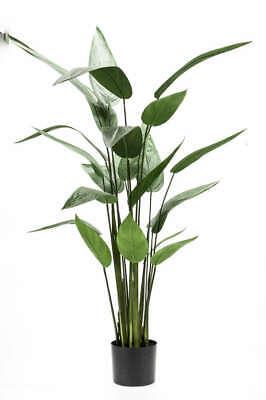 künstliche Grünpflanze Helikonie, Hummerschere Heliconia H. 125cm grün Emerald