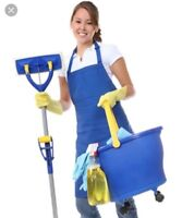Female looking for cleaning position(WANTED)