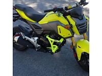 Honda grom BREAKING !!!!!!!!