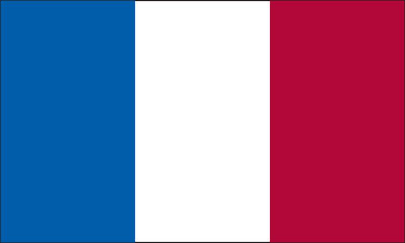 5x8 FT 5 x 8 FT SEWN STRIPES FRENCH FRANCE  Nylon Flag