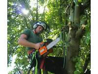 Gabriel, tree surgeon, garden clearance