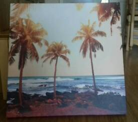 Lovely palm canvas picture