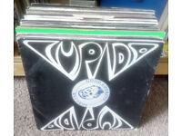 jungle records vinyl