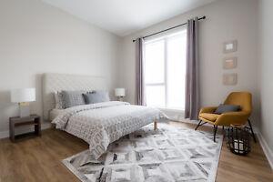 Magnifique condo 2 chambres