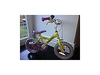 Apollo Daisychain Kids Bike