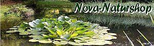 nova-naturshop