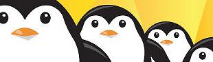 Paranoid Penguin TTC
