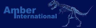Amber International US