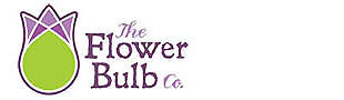 The Flower Bulb Company