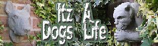 itzadogslife