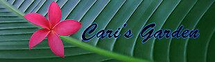 carisattic
