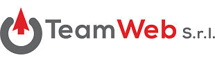 Team Web Srl