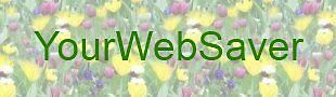 yourwebsaver
