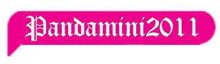 Pandamimi2011