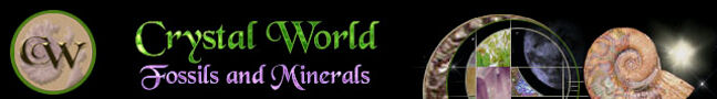 Crystal World Prehistoric Journeys