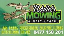 WYLIE'S MOWING & MAINTENANCE Old Reynella Morphett Vale Area Preview