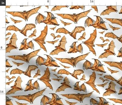 Childrens Halloween Costumes Australia (Animals Air Flying Fox Bat Australia Halloween Fabric Printed by Spoonflower)