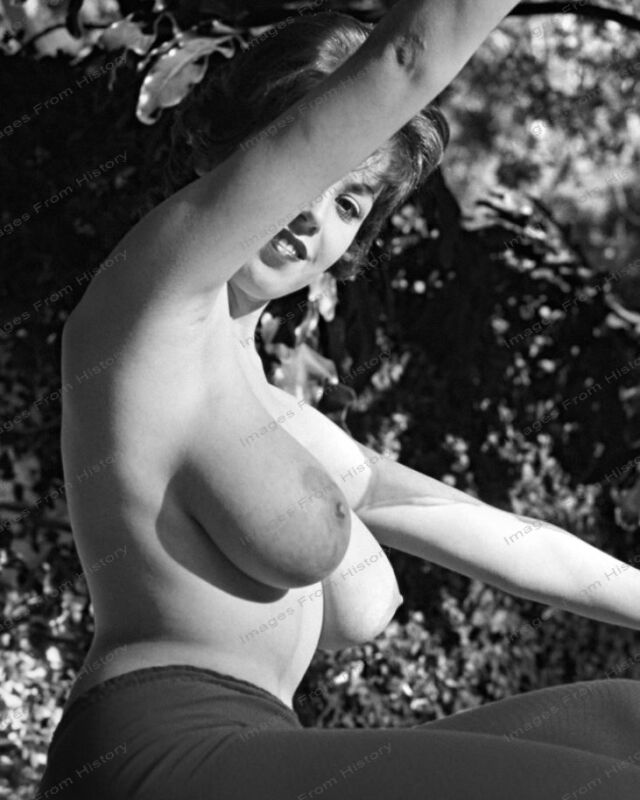 8x10 Print Sexy Model Pin Up Brunette 1966 Nudes #8762347