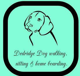 Experienced dog walker/pet sitter available in Dedridge and surrounding areas!!