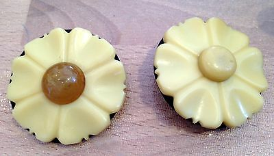 Lot of two vintage galalite galalith & glass flower pins /  brooches comprar usado  Enviando para Brazil