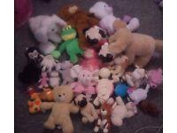 Large animal teddy bundle toy