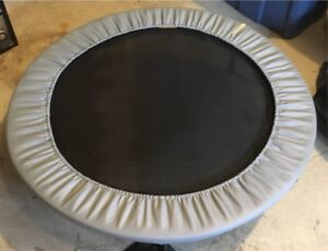 Indoor Therapy Trampoline