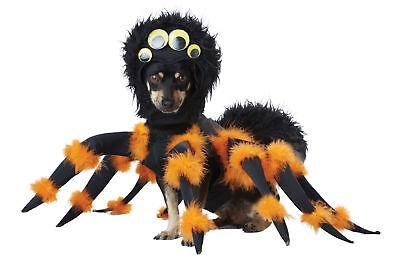 California Costumes Spider Pup Dog Costume Pet 20149