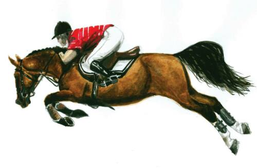 Original Watercolor Show Jumper Cross Country Hunter Horse Painting