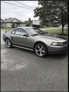Mustang for sale or TRADE?