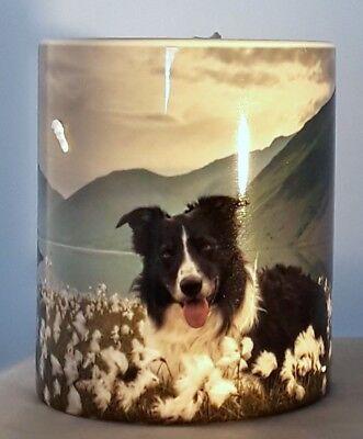 - Border Collie Scotland Highlands Loch Flowers Coffee Tea Mug Cup Full Image