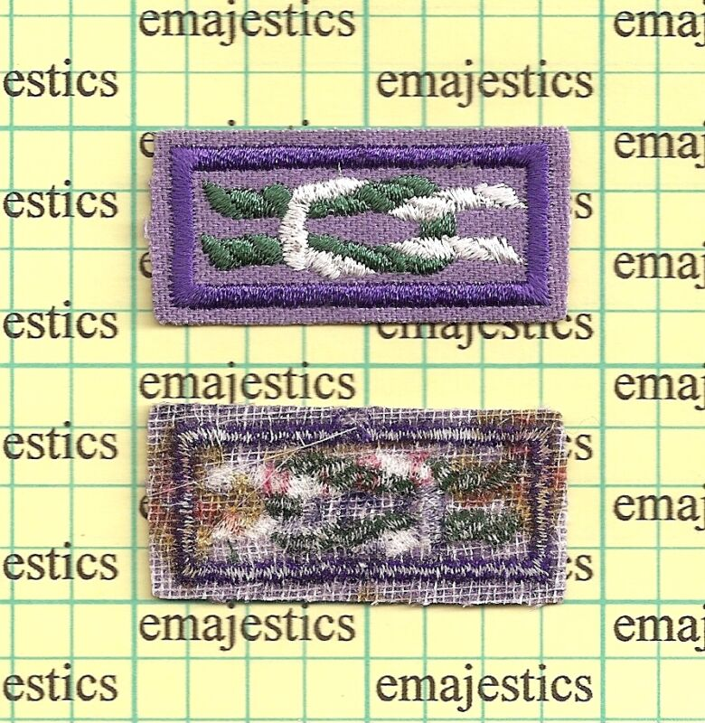 ASIAN AMERICAN AWARD SQUARE KNOT PATCH REAL MINT BSA 2010 GAUSE PLASTIC BACK