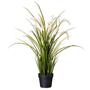 IKEA artificial/fake plants, 6x available, $50 bundle Clayfield Brisbane North East Preview