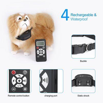 Waterproof Static Shock Vibration Beep Flash Modes Remote Dog Training CollarMT