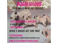 Pugalicious Dog walking & pet services