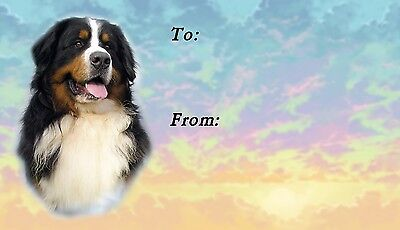 Bernese Mountain Dog Self Adhesive Gift Labels by Starprint