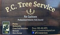 Professional and safe Tree Service