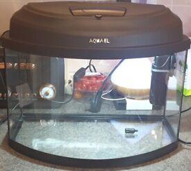 Aquael fish tank
